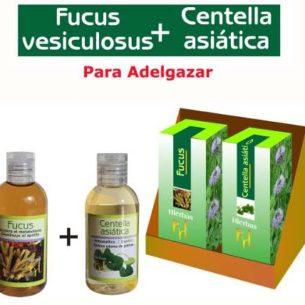 Fucus + Centella Asiatica Adelgazar Estar Forma Dieta Peso